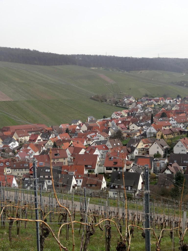 Strümpfelbach, umrahmt von Weinbergen