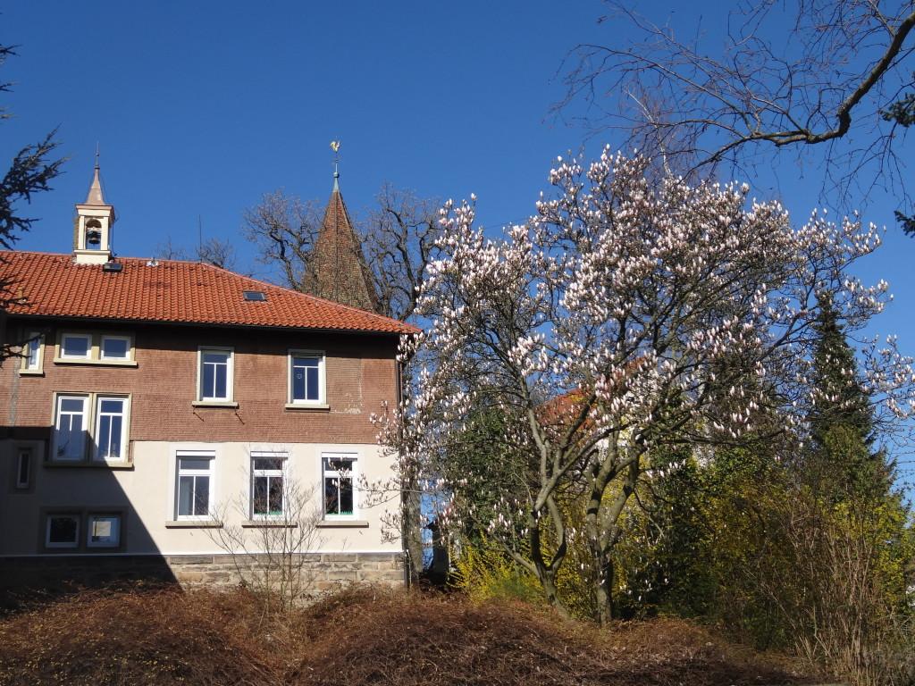 Auf der Buocher Höhe: Pfarrhaus und Kirche von Buoch