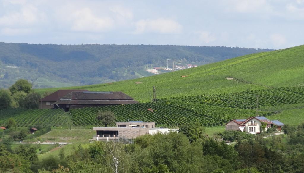 Strümpfelbacher Kelter und der Sonnenbesen vom Weingut Knauß