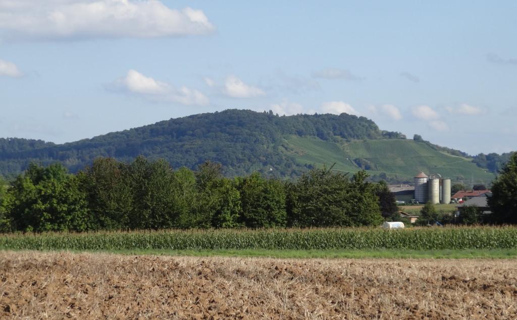Blick zum Korber Kopf. Nur der Mais steht noch auf den Feldern