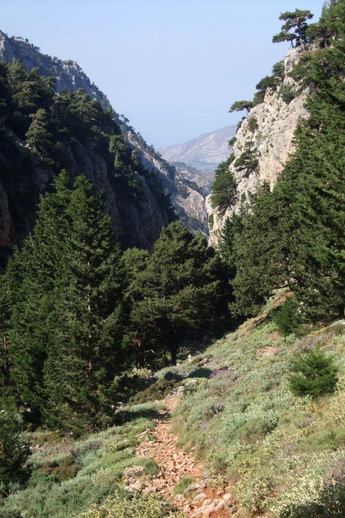 Die eng stehende Felsen der Irini-Schlucht