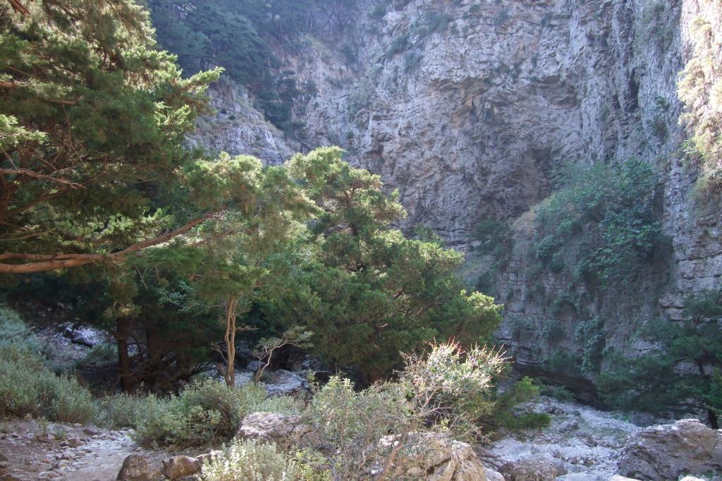 Imbros-Schlucht nach Chora Sfakion (Tour 12)