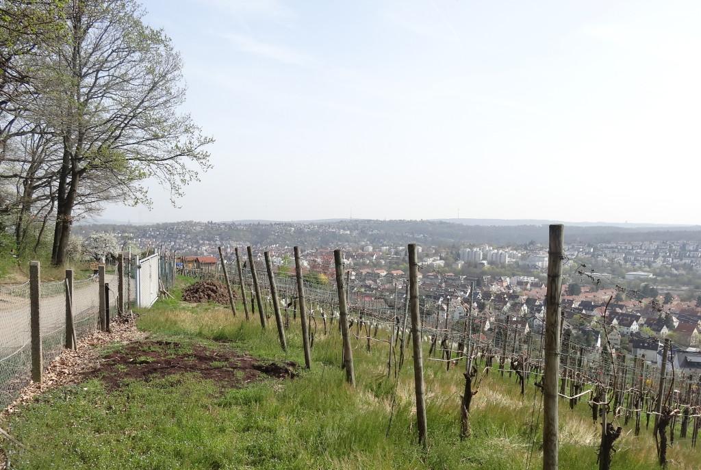 Blick vom Lemberg nach Feuerbach