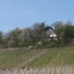 Sieben Eichen, Affalterbach