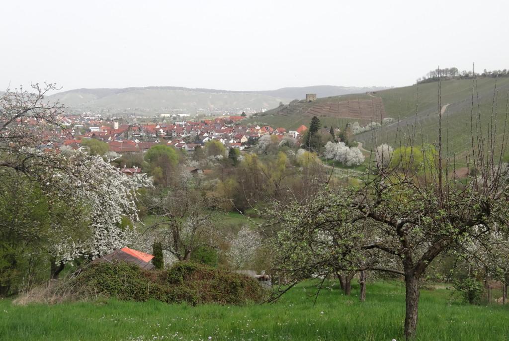 Stetten mit Y-Burg