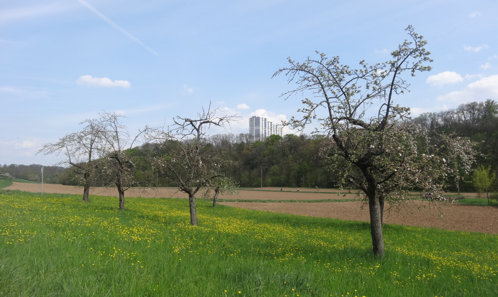 Feuerbach-Tal