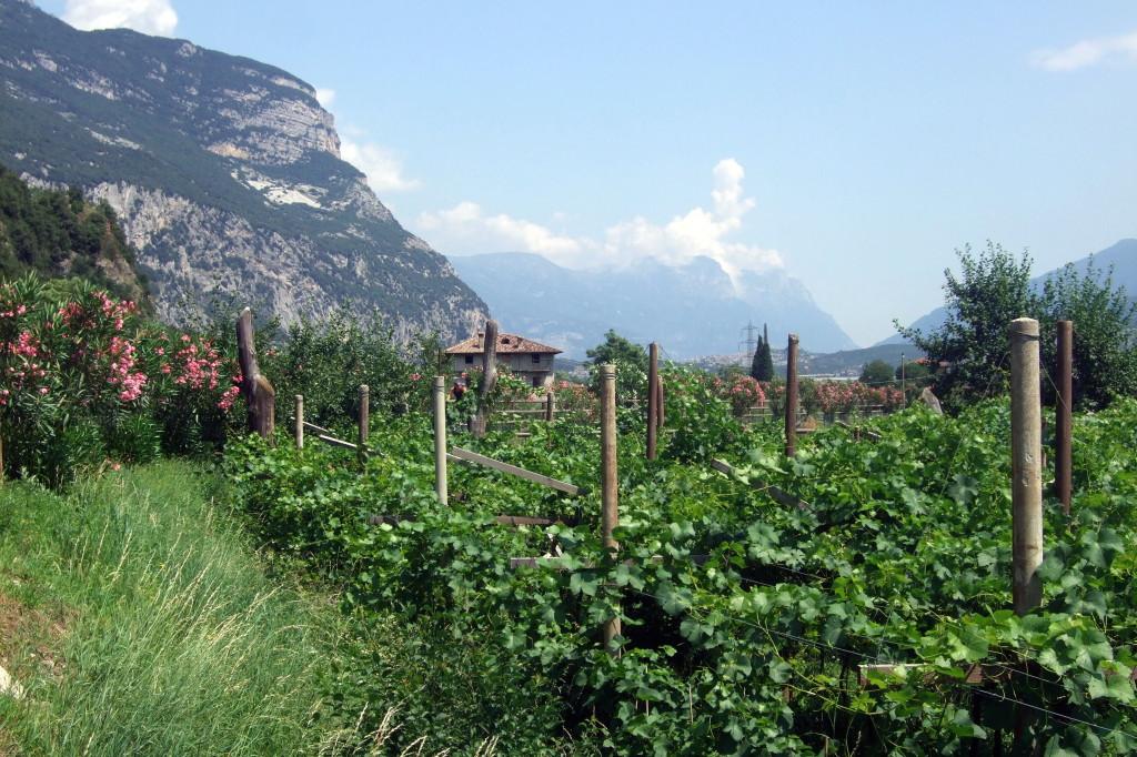 Sarca-Tal nach Dro