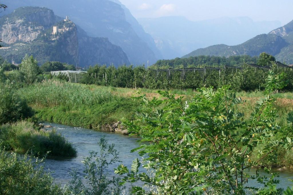 Entlang der Sarca zurück nach Arco. Durch eine wunderschöne Landschaft und Obstplantagen