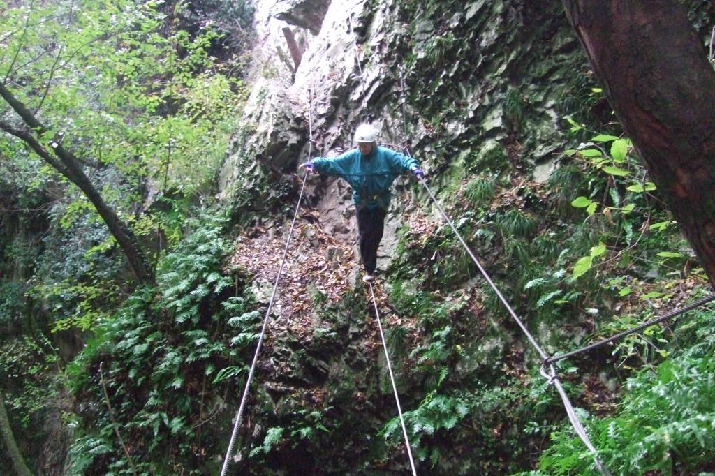 Sogar 2 Drahtseilbrücken erfreuen den Kletterer