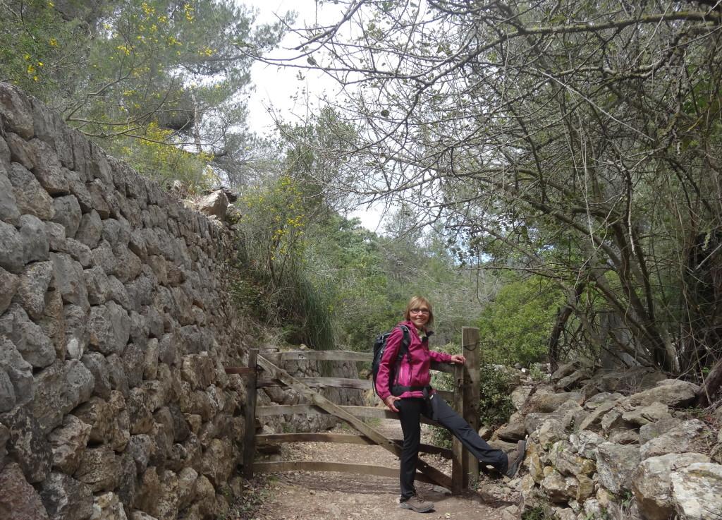 Cami de Correu, Esporles