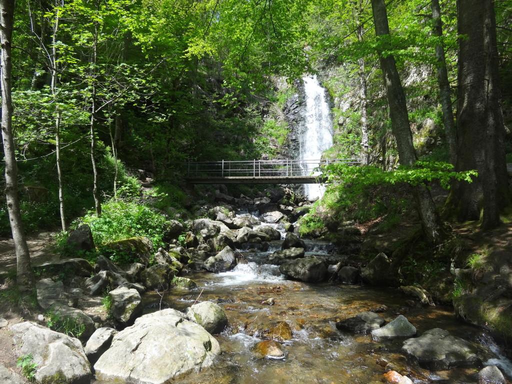 Todtnauberger Wasserfall
