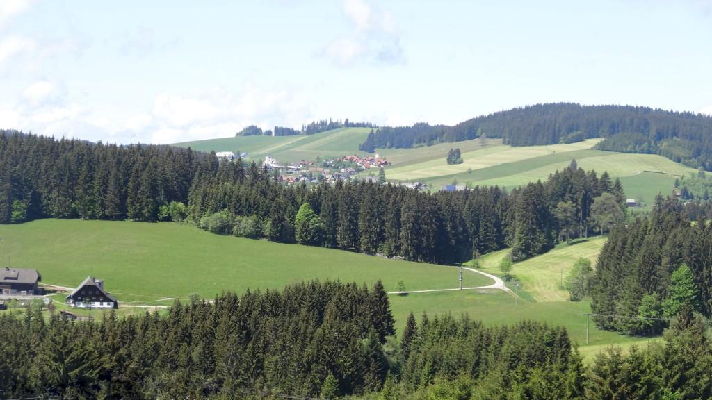 Panoramaweg Hinterzarten-Breitnau