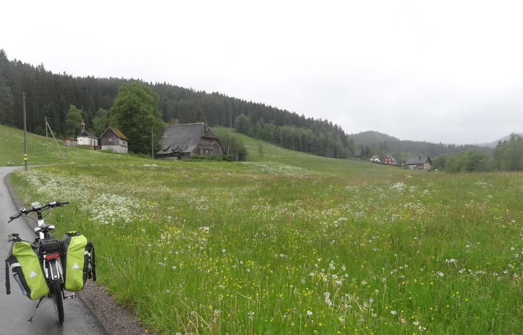 2 km bis Hinterzarten