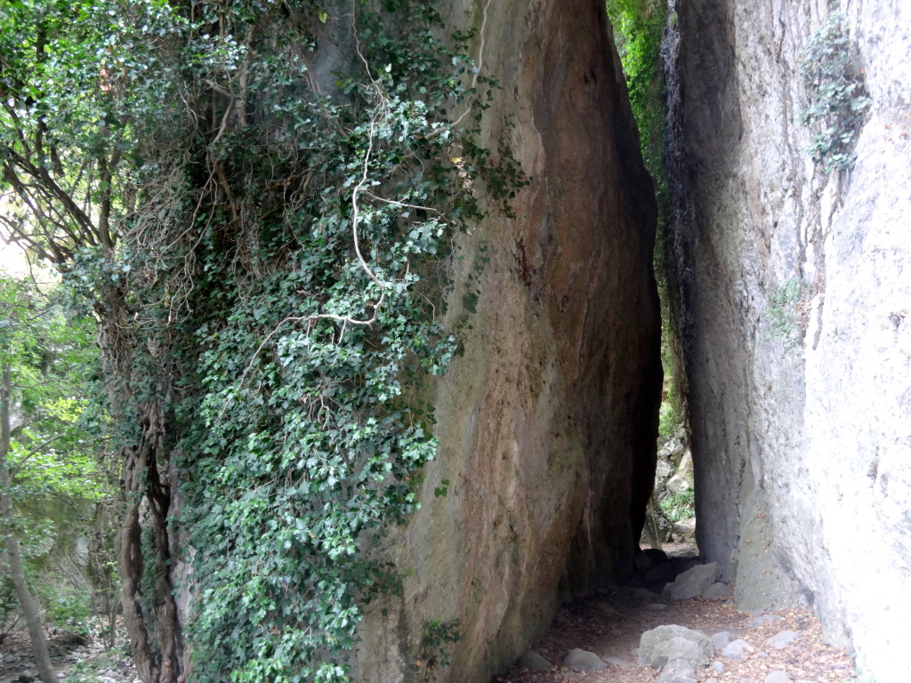 Eng stehende Felsen in der Schlucht