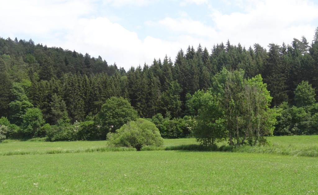 Lauchert-Tal