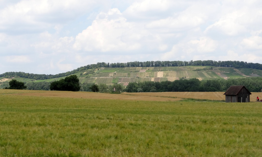 Mühlacker - Maulbronn