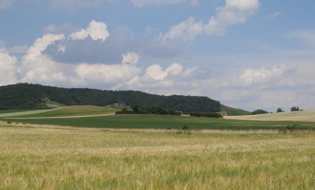 Landschafts-Impressionen bei Gündlingen