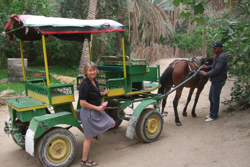 Touzeur ist eine riesige Oase, wir lassen uns per Pferdekutsche hindurch-chauffieren