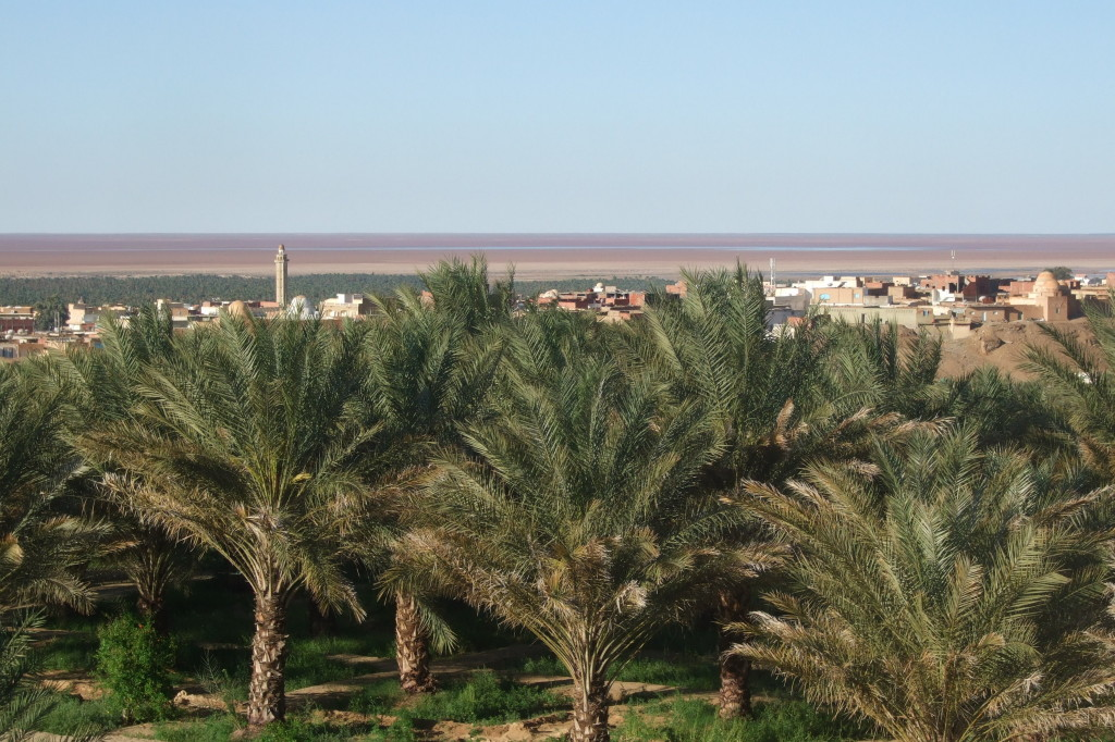 Vom Hotelbalkon sehen wir über die Oase Nefta hinweg zum großen Salzsee