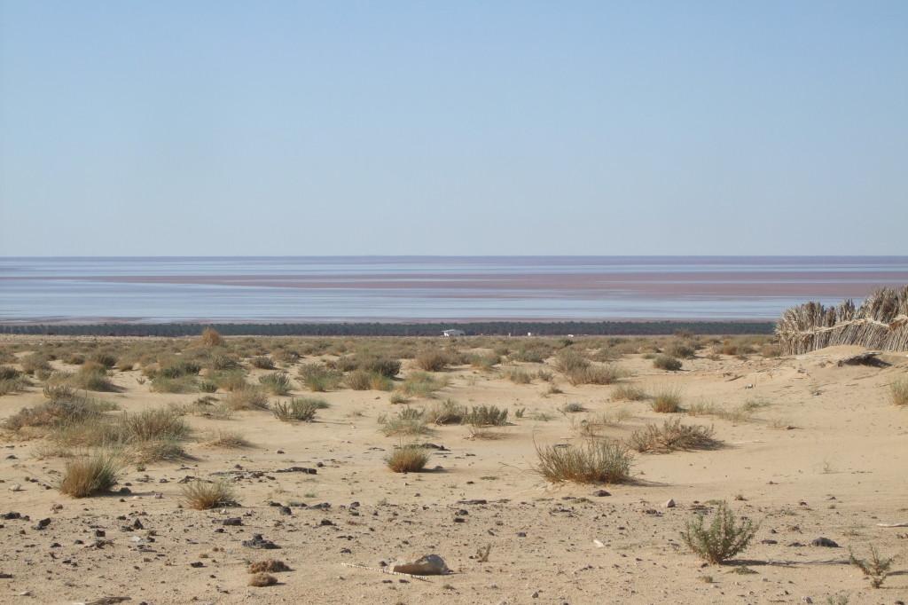 Auf der Fahrt von Touzeur nach Nefta wird man begleitet vom großen Salzsee