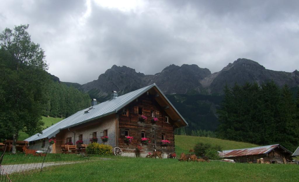 Im Wildental bei Mittelberg