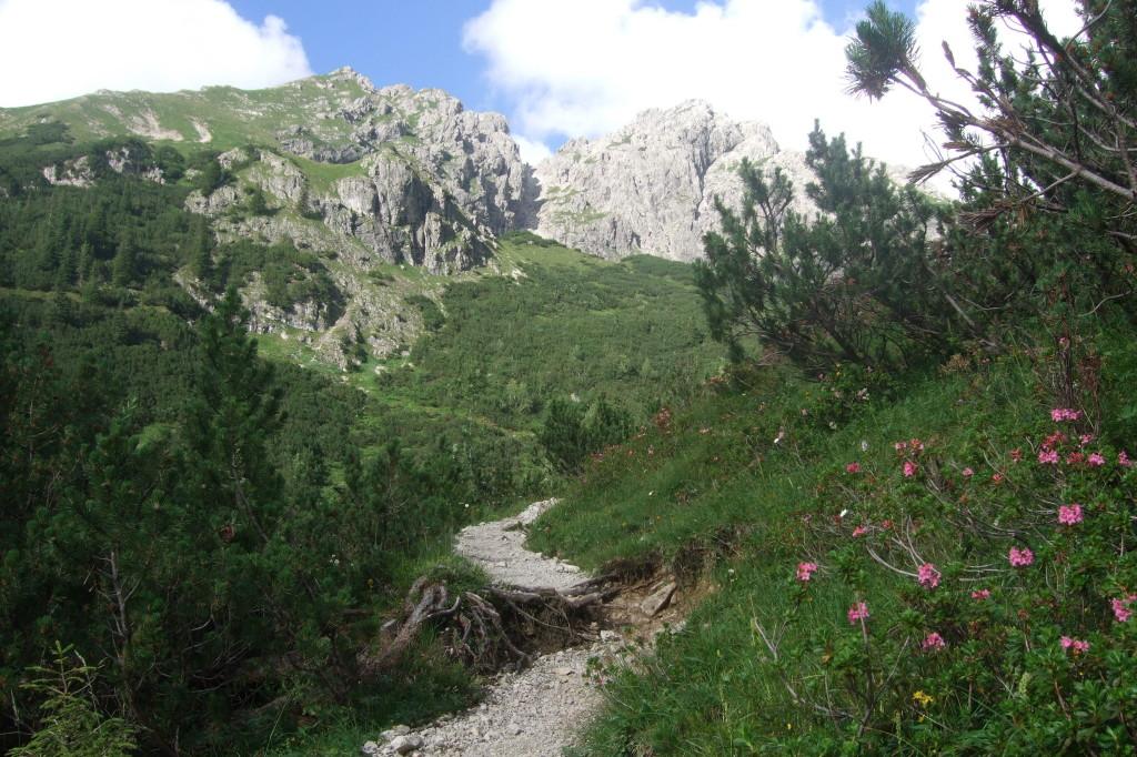Aufstieg zur Fiderepass-Hütte