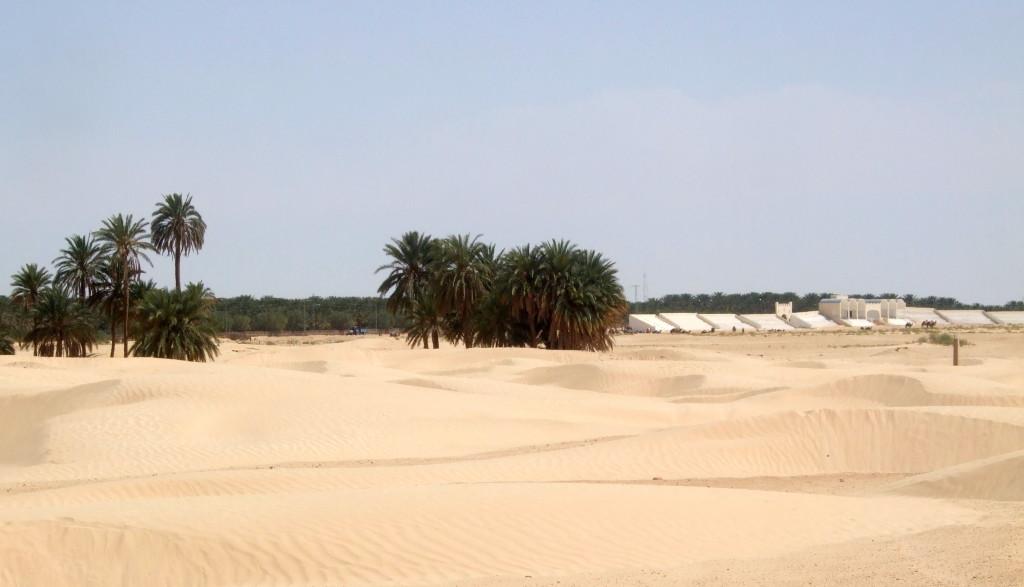Die Festival-Tribünen am Rande der Shara