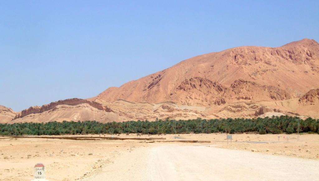Unvermittelt gibt es Palmen in der Wüste. Die erste Bergoase: Chebika
