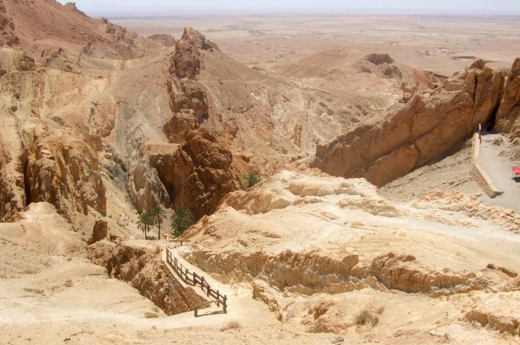 Der Weg führt weiter den Berg hinauf und man blickt weit in die Wüstenlandschaft hinaus