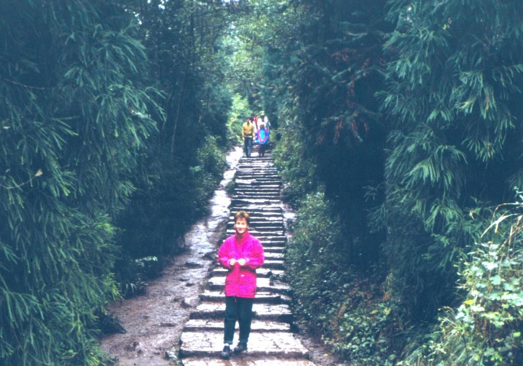 Der Weg hinauf zum heiligen Berg. Man kann sich auch mit der Sänfte hinauftragen lassen