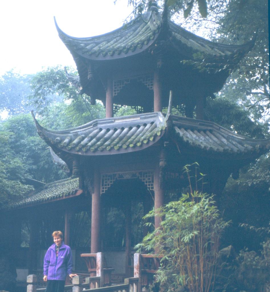 Schöner Park mit allen Elementen eines perfekten Chinesischen Garten