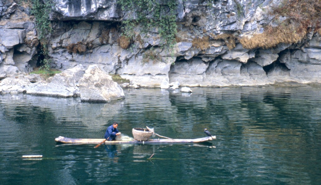 Steinwald (Shilin) bei Kunming