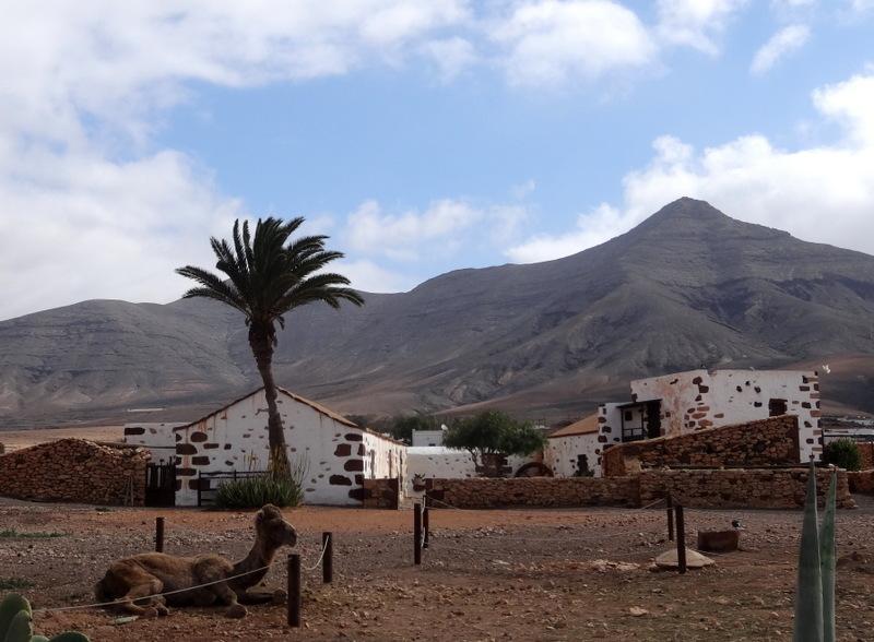 Das Ökomuseum in Tefia besteht aus sieben restaurierten Bauernhöfen. Die historisch eingerichteten Wohnräume veranschaulichen das Leben vor ca. 100 Jahren
