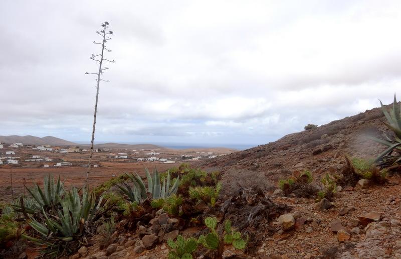 Am Fuß des heiligen Berges liegt die Ortschaft Tindaya