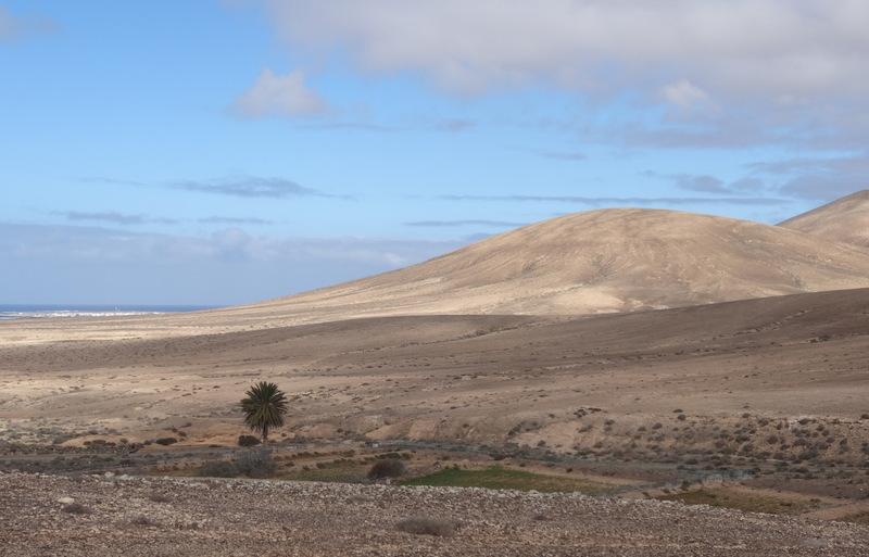 Wir fahren wieder ein Stück zurück und suchen uns auf Sandpisten durch die Wüstenlandschaft hindurch nach El Cotillo