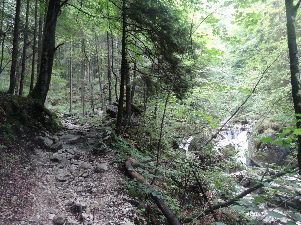 Es bgeinnt mit dem idyllischen Zustieg entlang des Bächleins