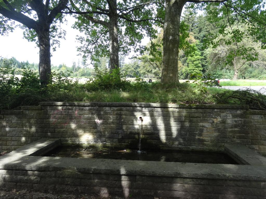 Lein-Quelle bei Kaisersbach