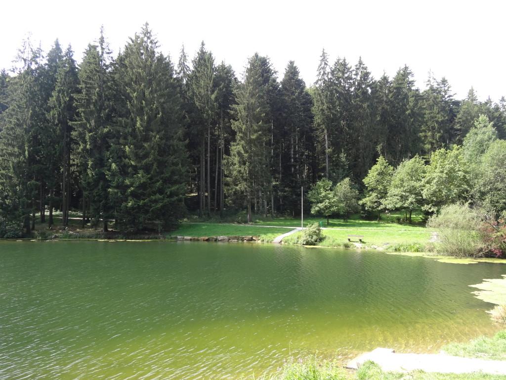 Eisenbach-Stausee