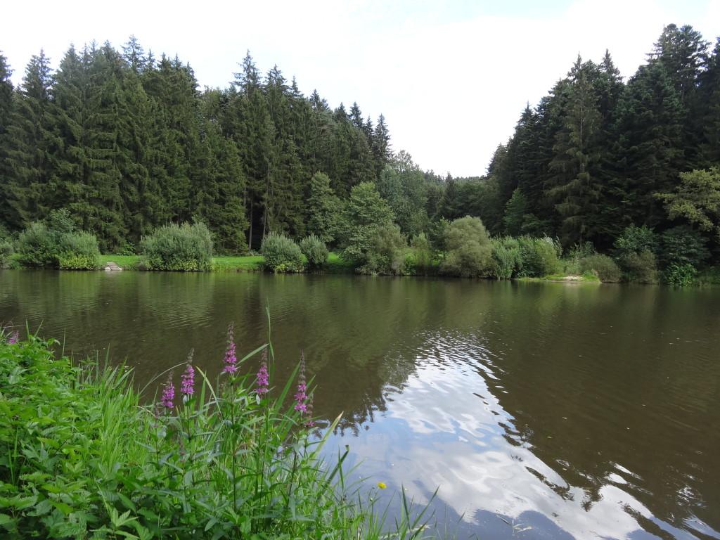 Hüttenbühlsee
