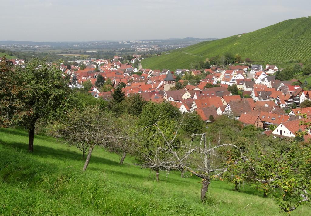 Blick zurück nach Strümpfelbach