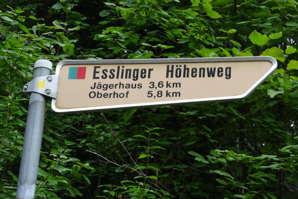 Wir folgen dem Esslinger Höhenweg vom Jägerhaus bis zur Katharinenlinde