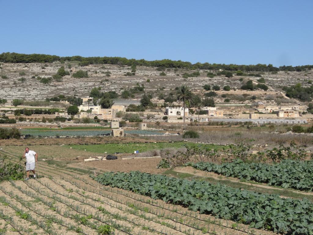 Das fruchtbare und intensiv bewirtschaftete Pwal´s Valley
