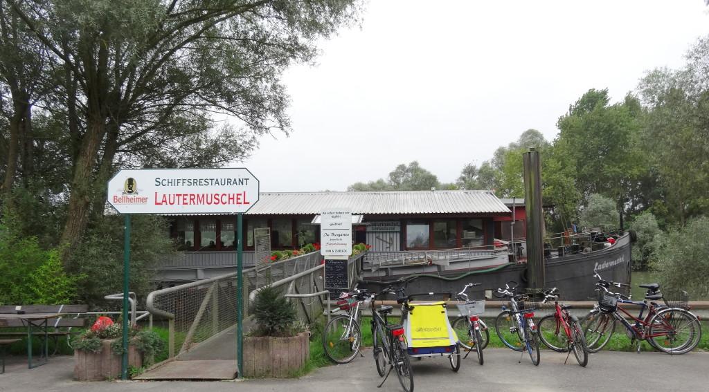 Zusammenfluß Lauter / Rhein bei Neuburg