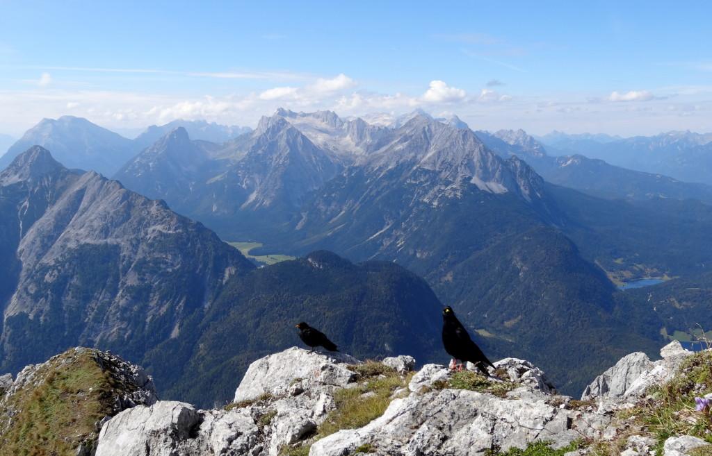 Wetterstein, hinten, der höchste ist die Zugspitze