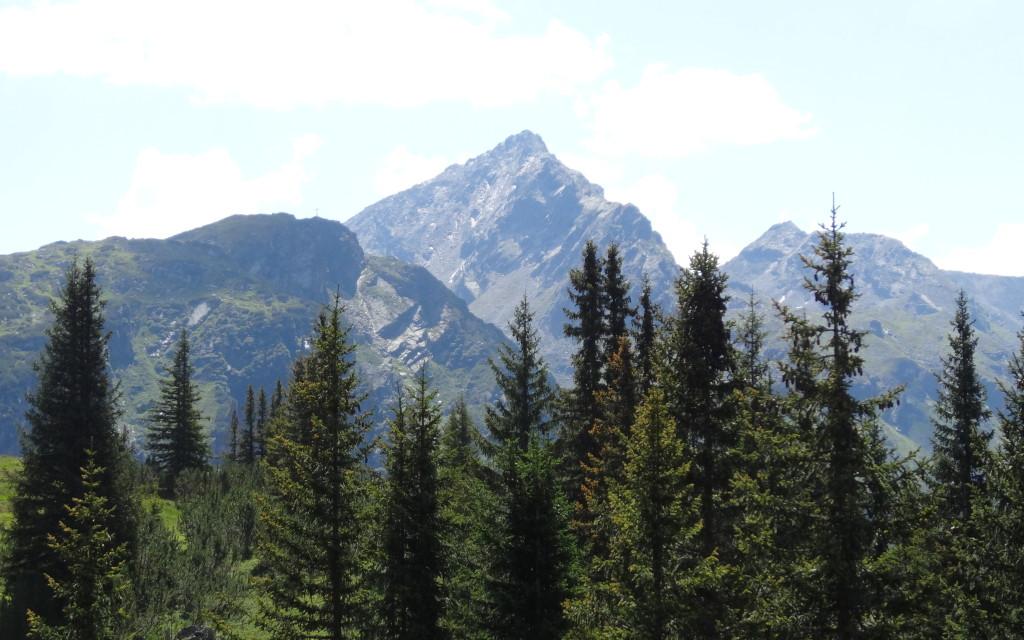 Balun-Spitze