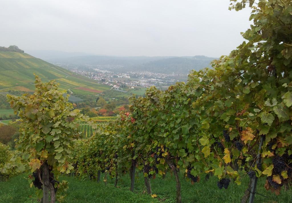 Grunbach