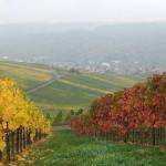 Schnait, oben Aichelberg