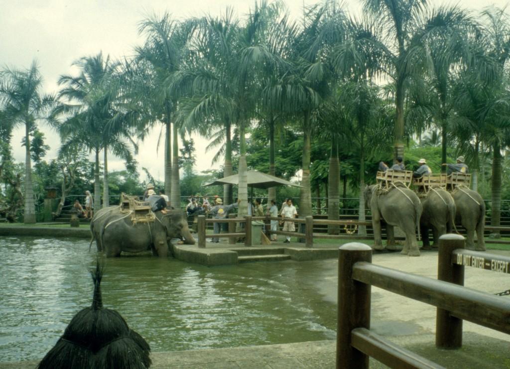 Bali02-2001-055